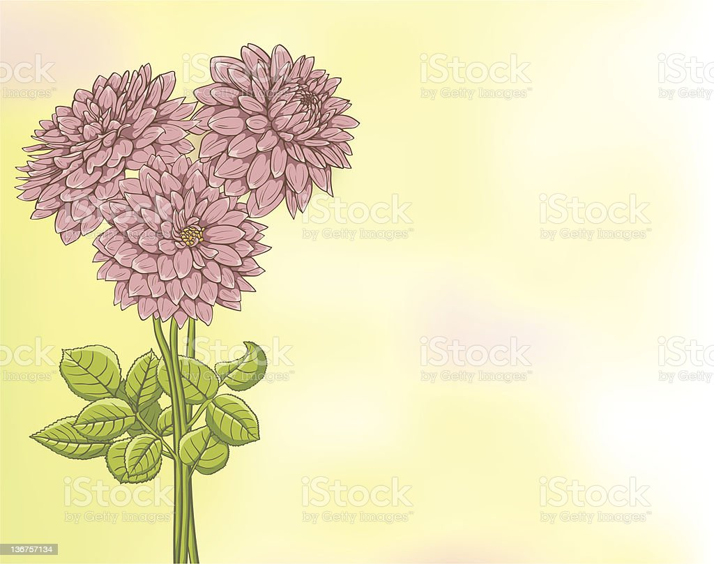 Floral background with place for text royalty-free stock vector art