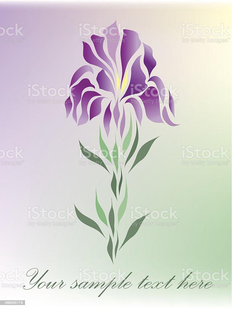 Floral beauty greeting card vector vector art illustration