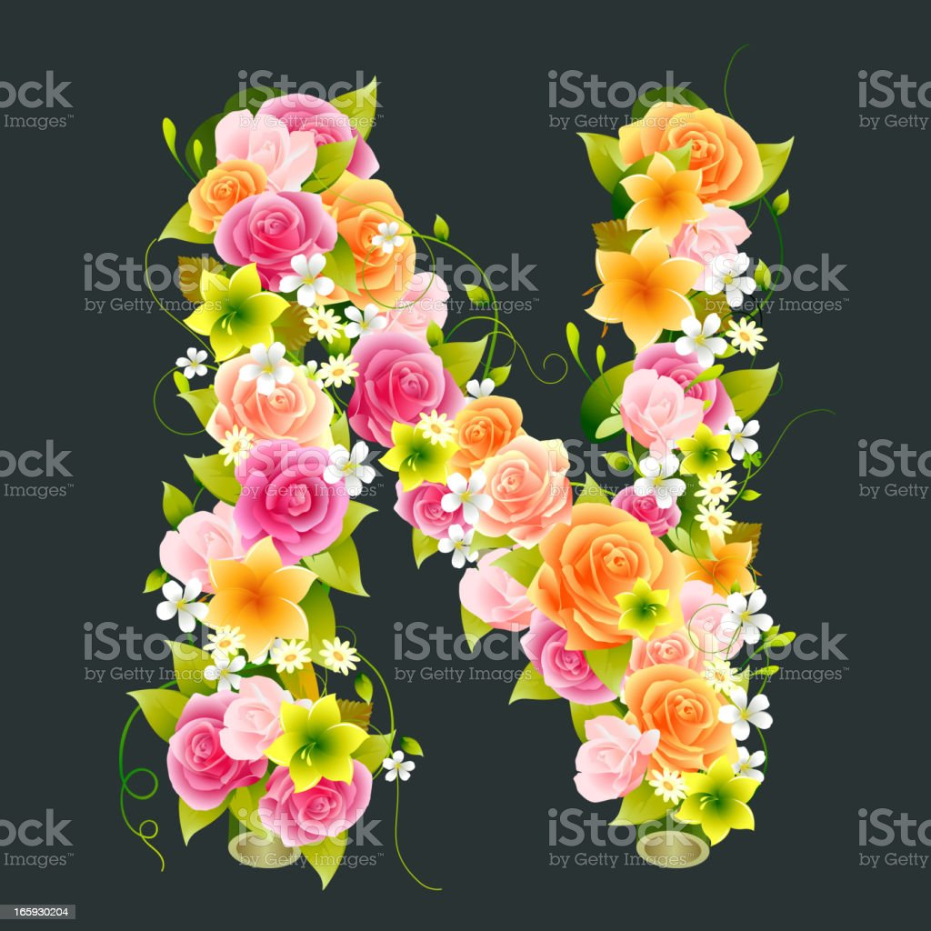Floral Capital letter N on Bamboo vector art illustration