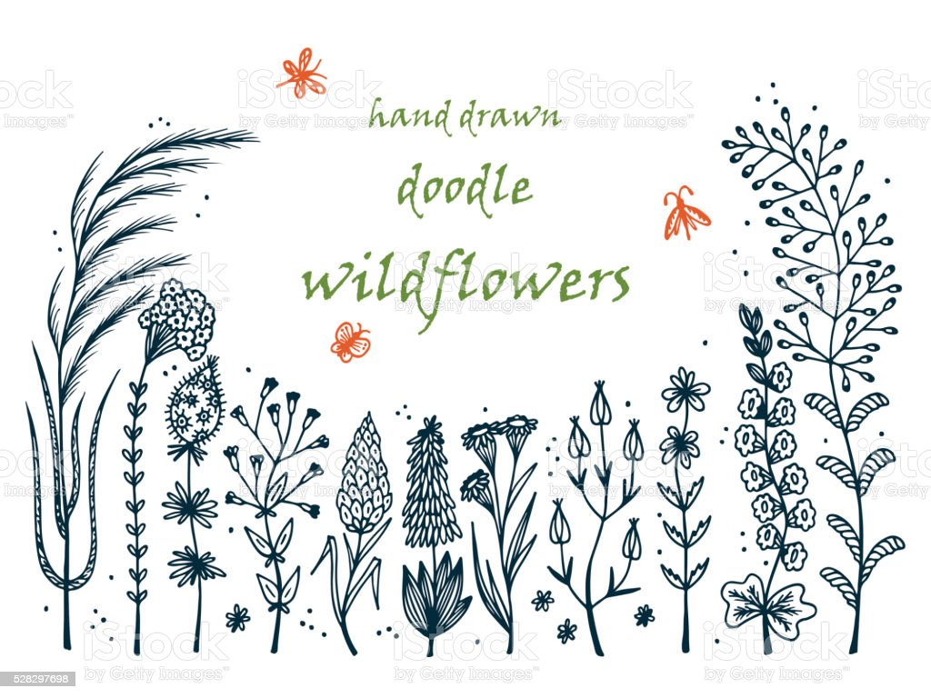 Floral frame. Hand drawn doodle Wild Flowers. Floral  Vector Set vector art illustration