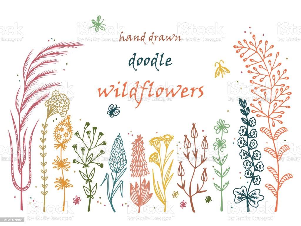 Floral frame. Hand drawn doodle Wild Flowers. Floral  Vector Set vector art illustration