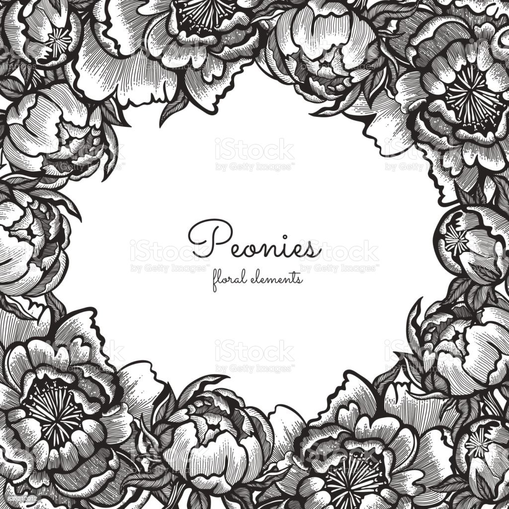 Floral frame with hand drawn vintage peonies. Vector elements for design template. Ornate decor for invitations, wedding greeting cards. vector art illustration