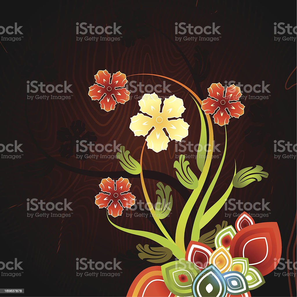 Floral Graphic - Orchids royalty-free stock vector art