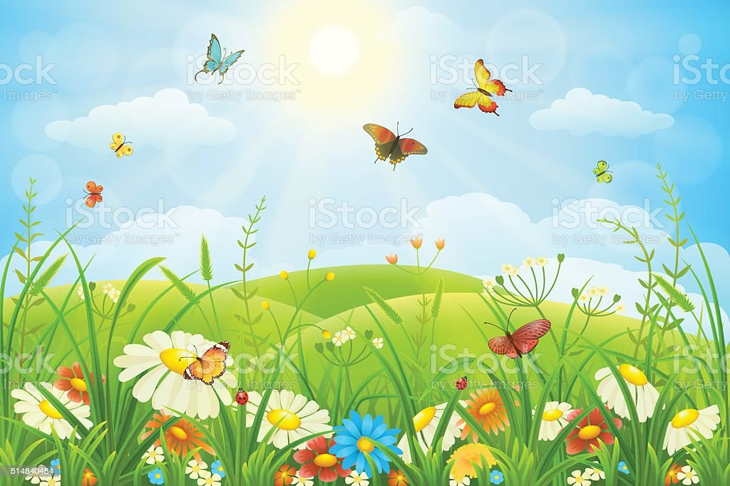 Floral meadow vector art illustration