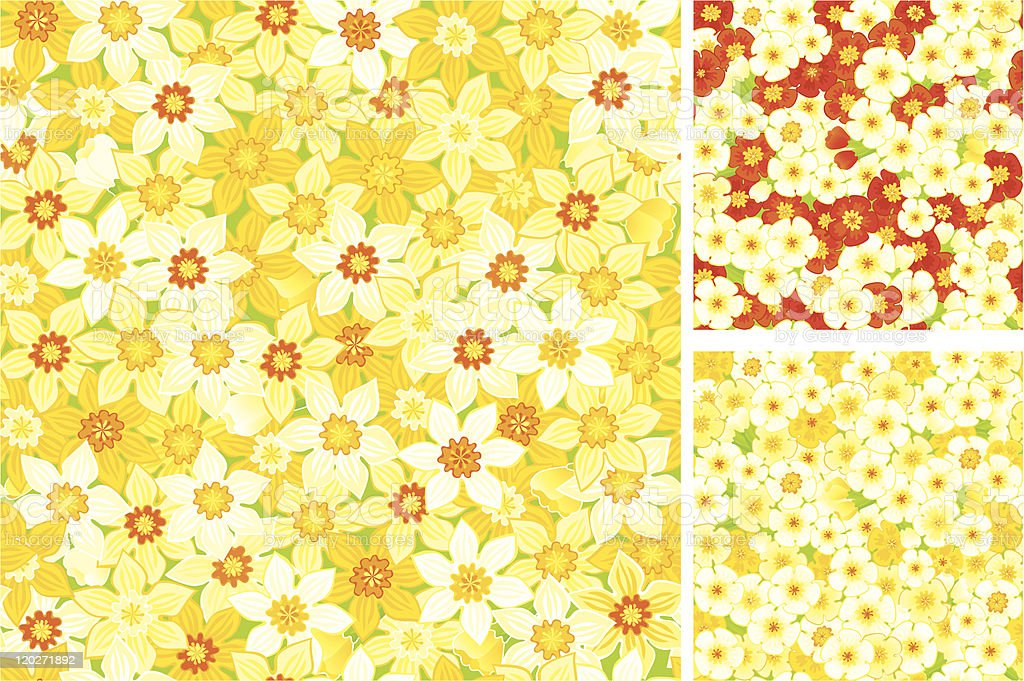 floral seamless backgrounds of spring primroses vector art illustration