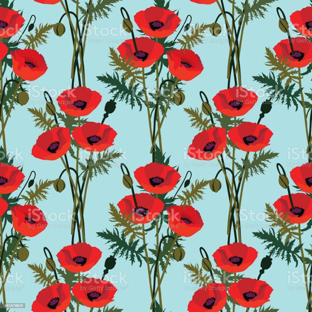 Floral seamless pattern of poppy - Illustration vector art illustration