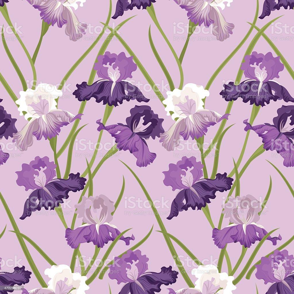Floral Seamless Pattern (Purple Iris) royalty-free stock vector art