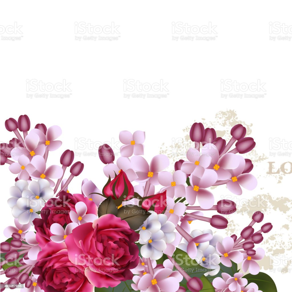 Floral vector background  with lilac flowers and roses royalty-free stock vector art