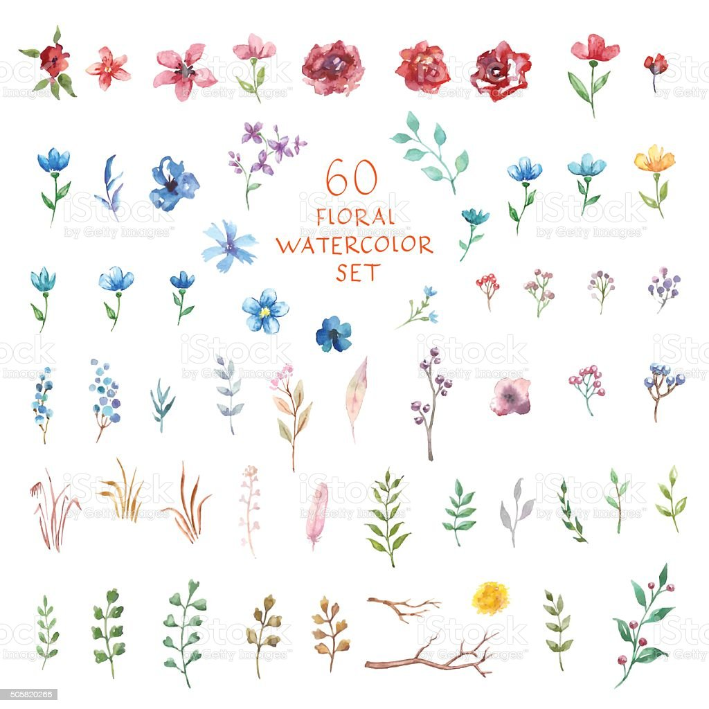 Floral watercolor set. Different vector elements. vector art illustration
