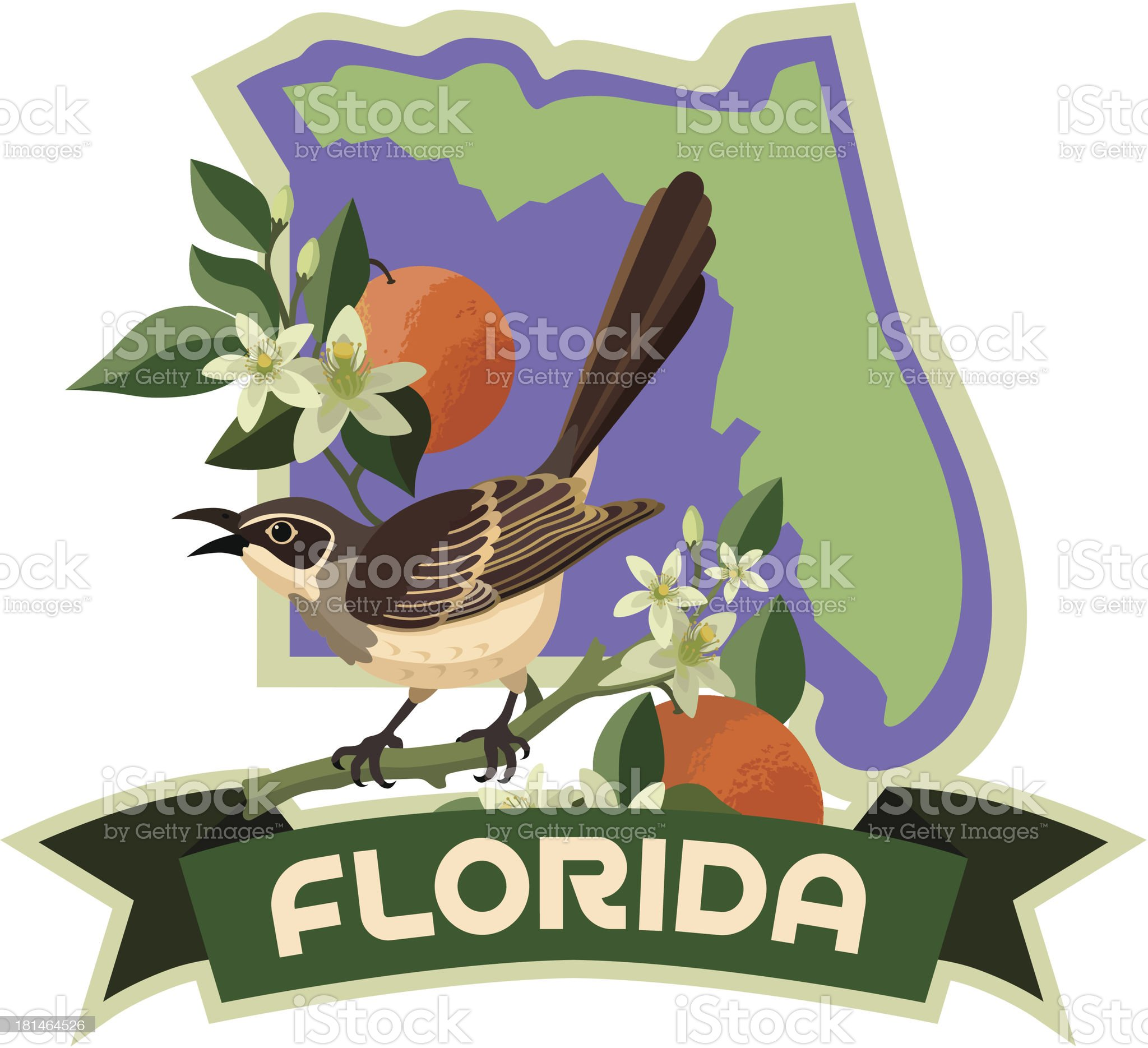 Florida state bird and flower royalty-free stock vector art