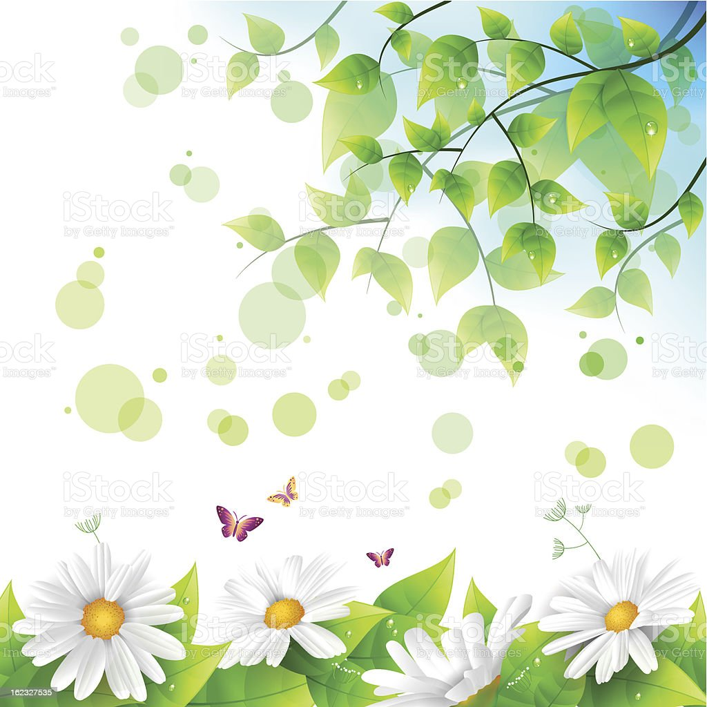 Flower and leaf background royalty-free stock vector art