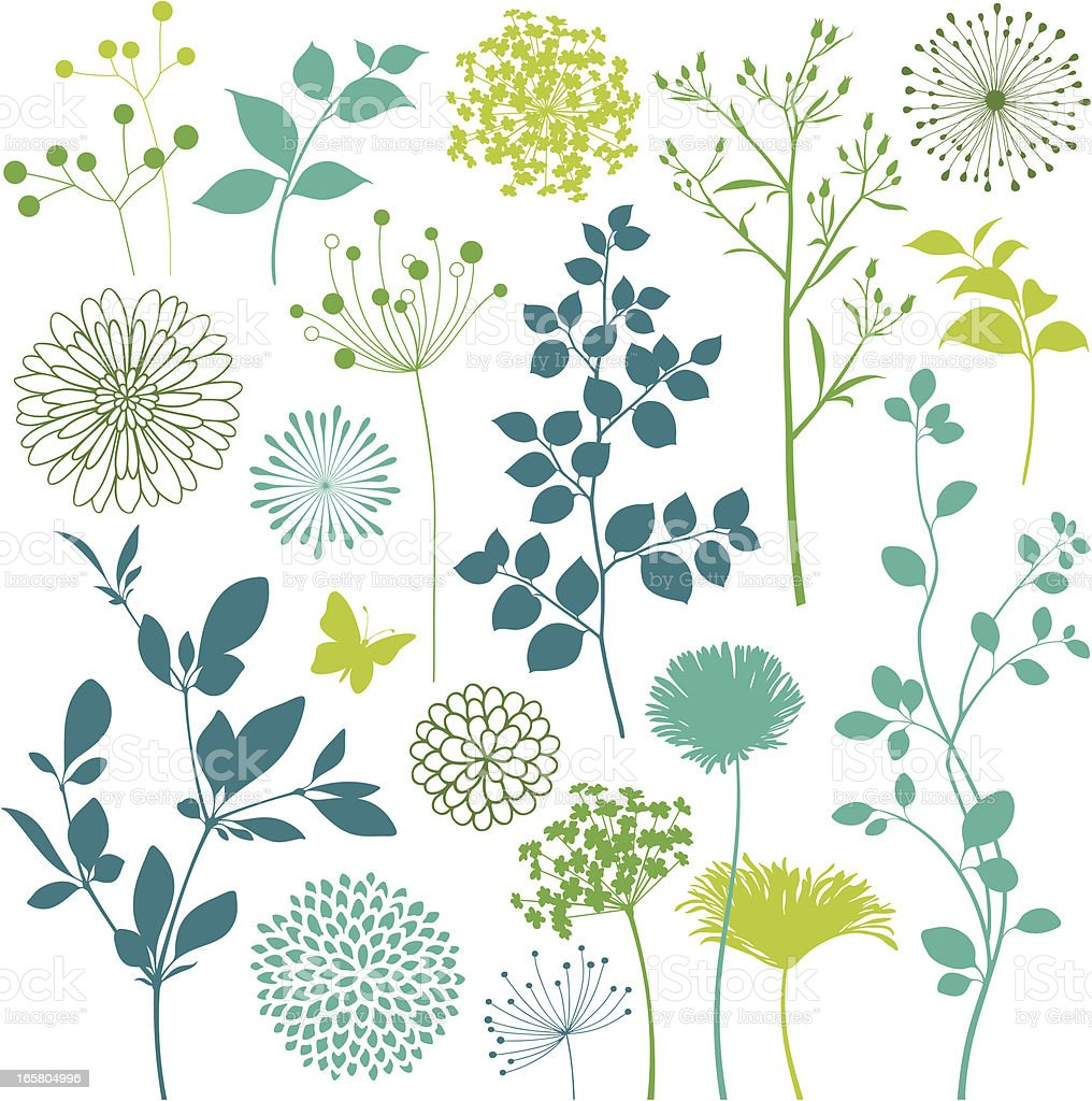 Flower and Leaf Design Elements vector art illustration