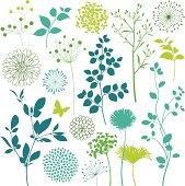 Flower and Leaf Design Elements