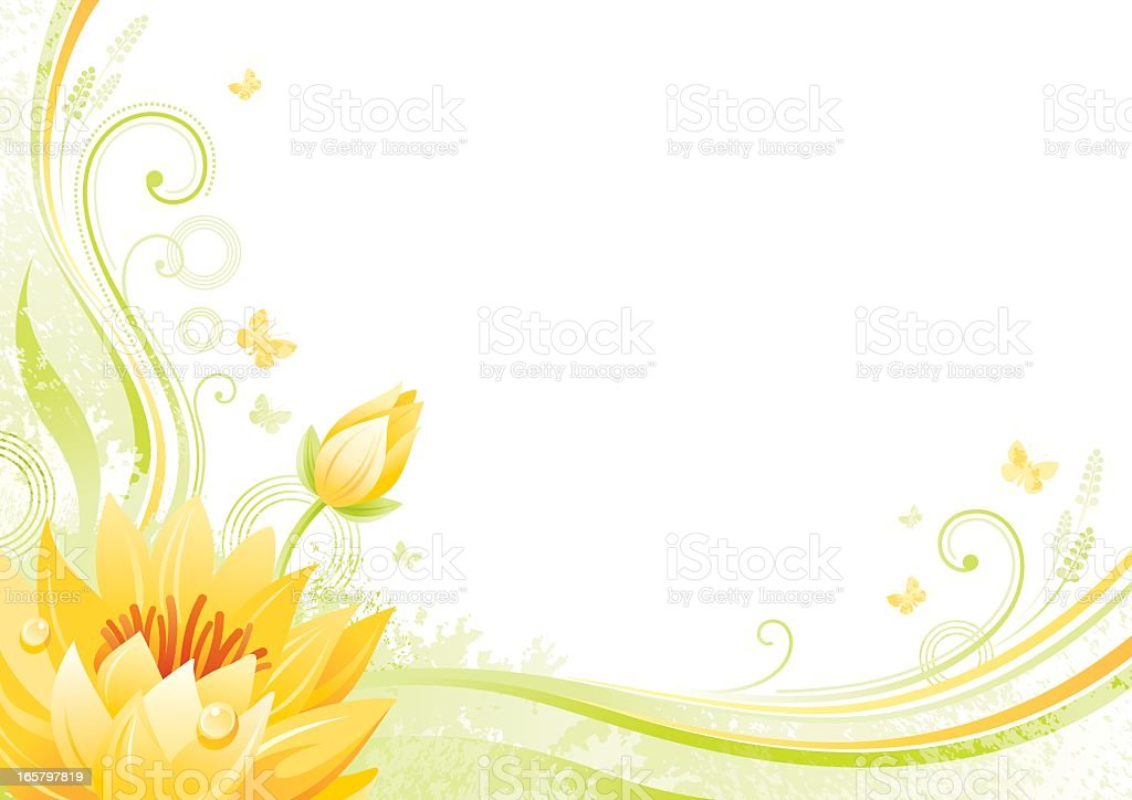 Flower background with copyspace: Lotus vector art illustration