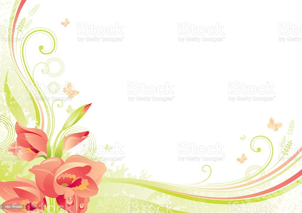 Flower background with copyspace: red Gladiolus vector art illustration