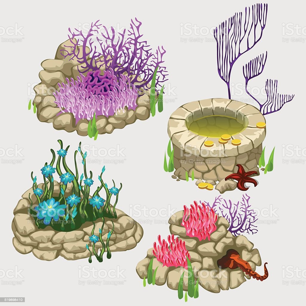 Flower beds with various corals and plants vector art illustration