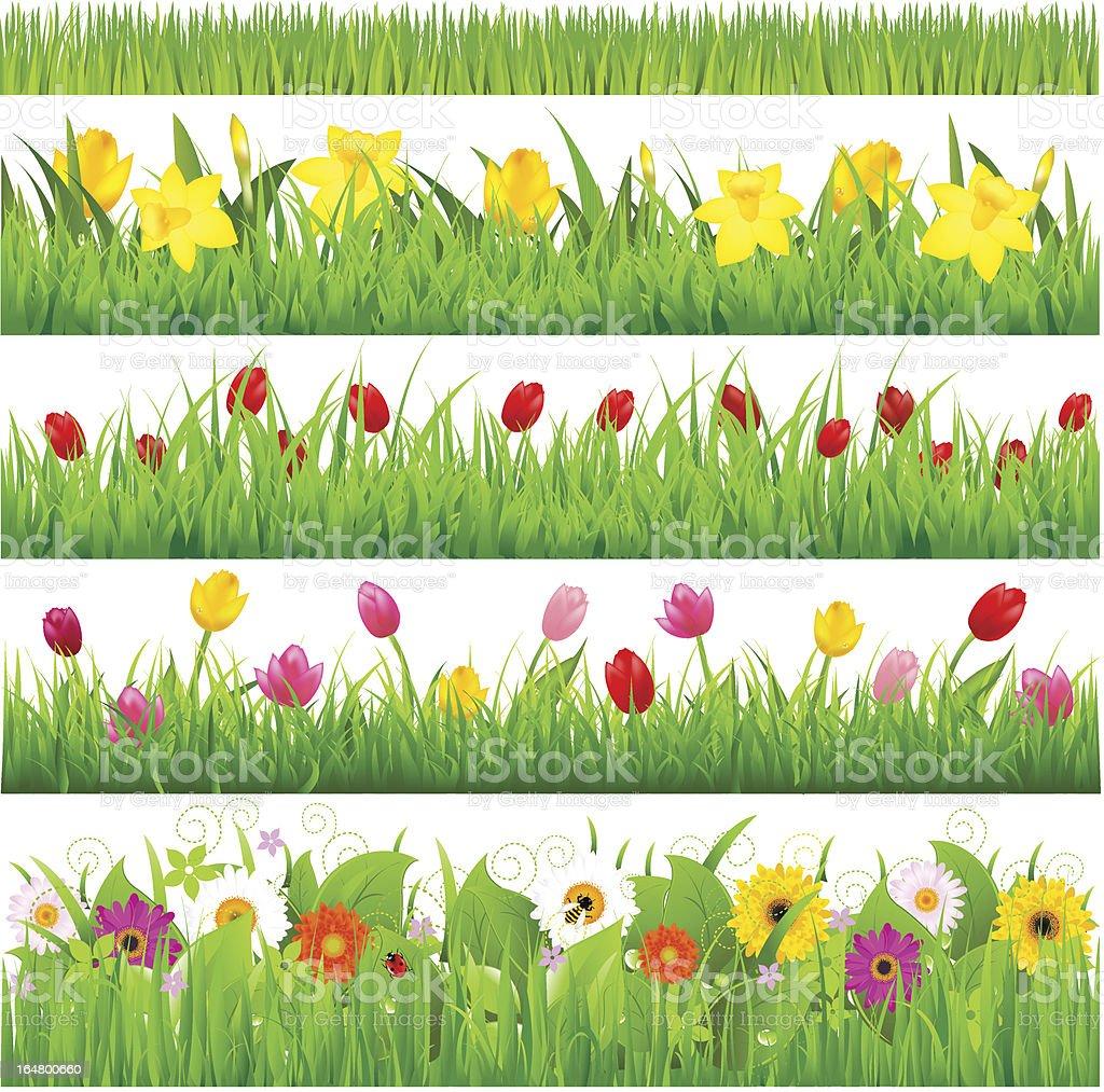 Flower Borders Set vector art illustration