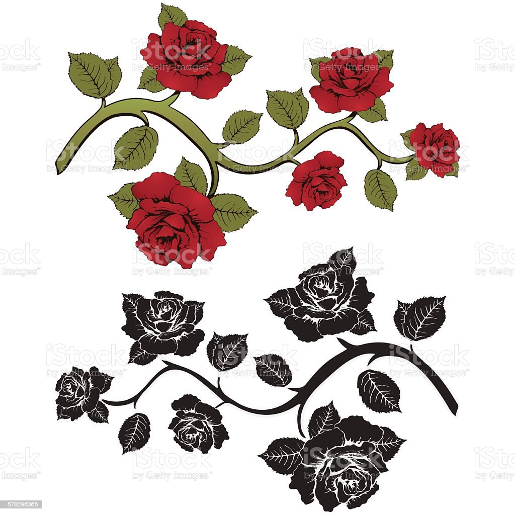 Flower branch roses. Set of red and black  branches. Floral royalty-free stock vector art