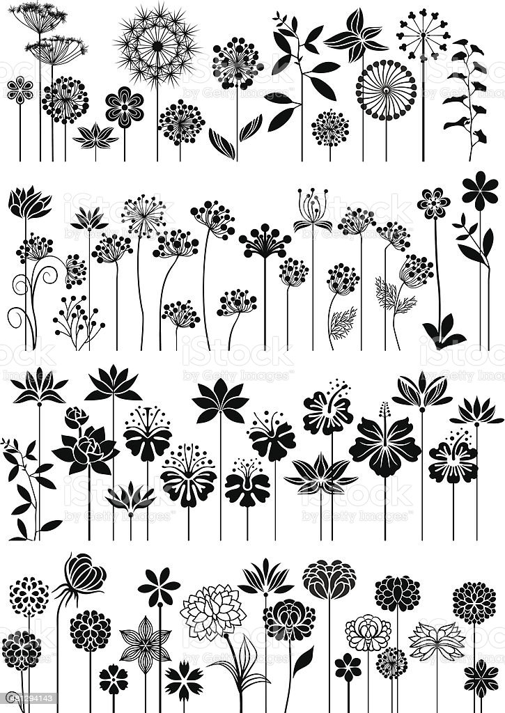 Flower collection vector art illustration
