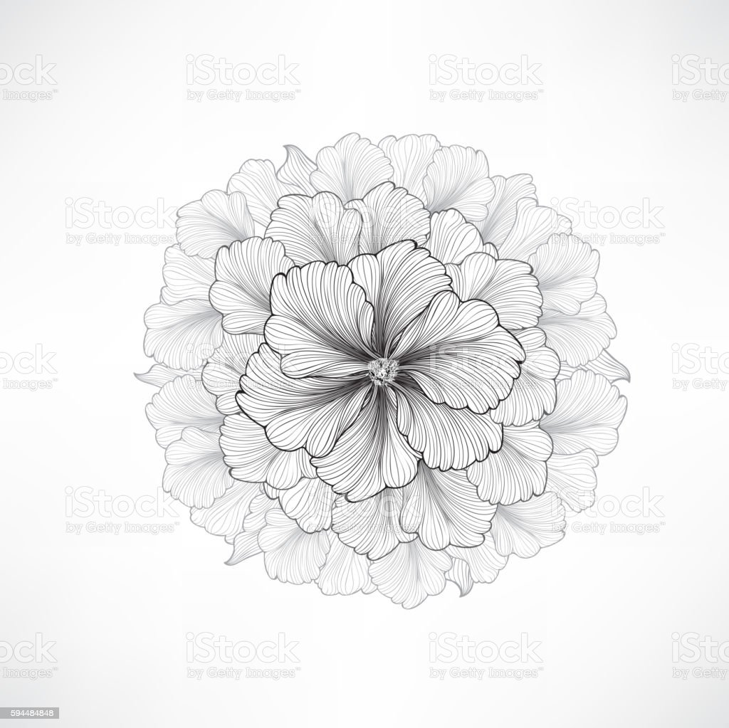 Flower bouquet background. Floral frame. Flourish greeting card.