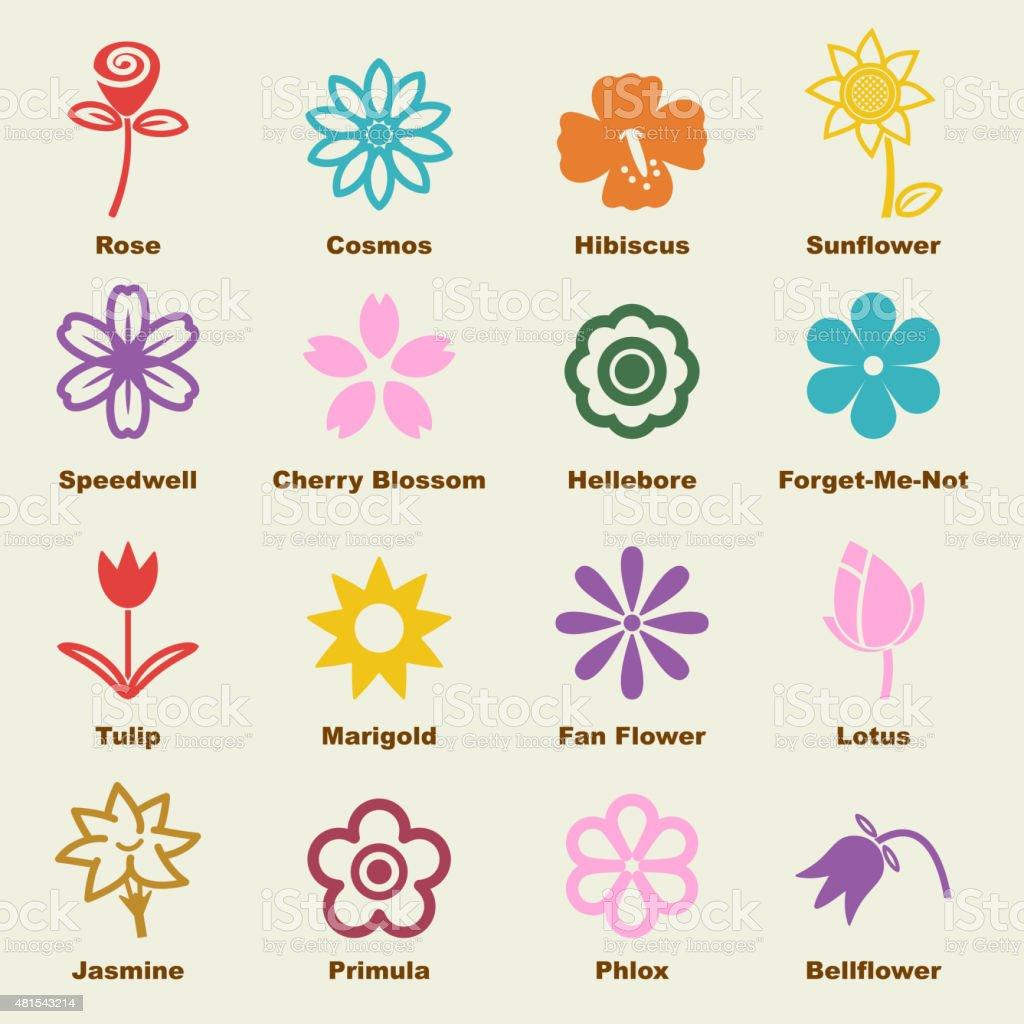 flower elements vector art illustration