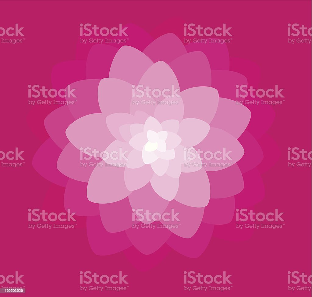Flower explosion royalty-free stock vector art