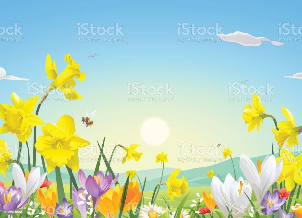 Flower Field In The Morning vector art illustration