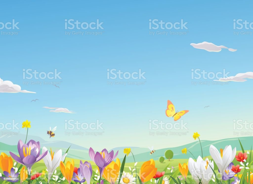 Flower Field vector art illustration