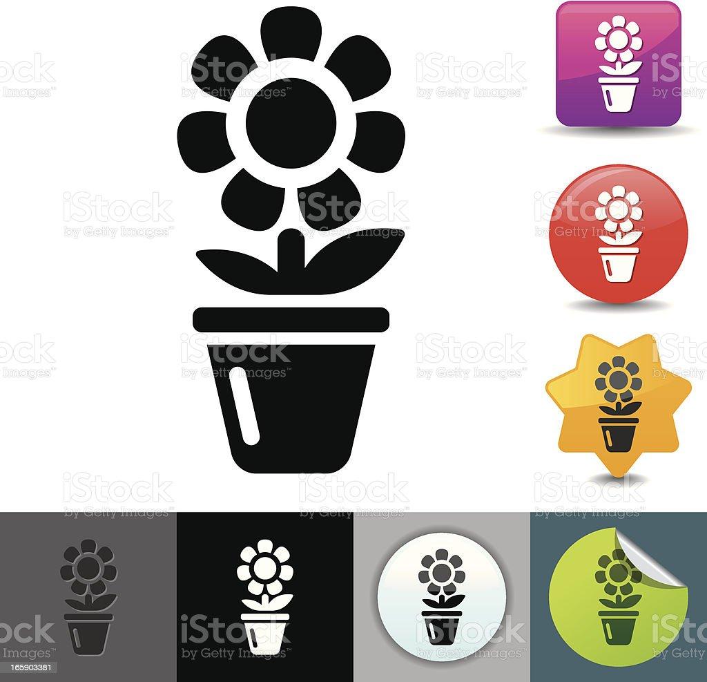 Flower in pot icon | solicosi series vector art illustration