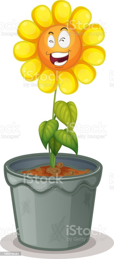 Flower in the pot royalty-free stock vector art