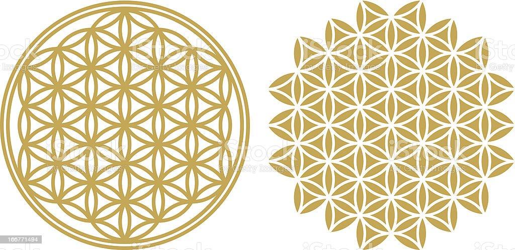 Flower of life - ancient symbol vector art illustration
