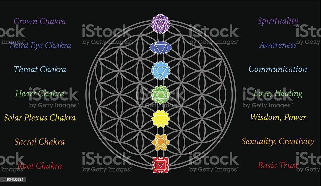 Flower of Life Chakras Description Black vector art illustration