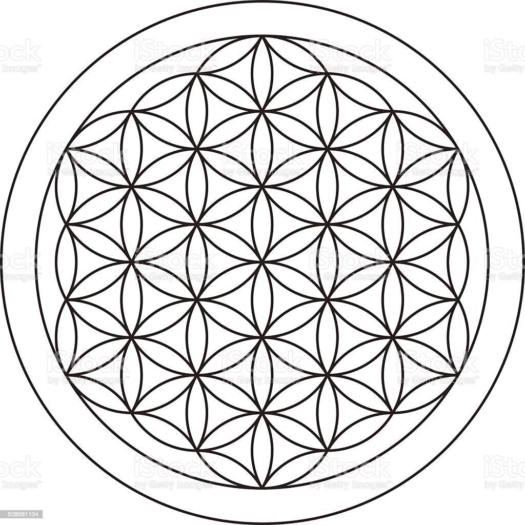 Flower of life. Sacred geometry. vector art illustration