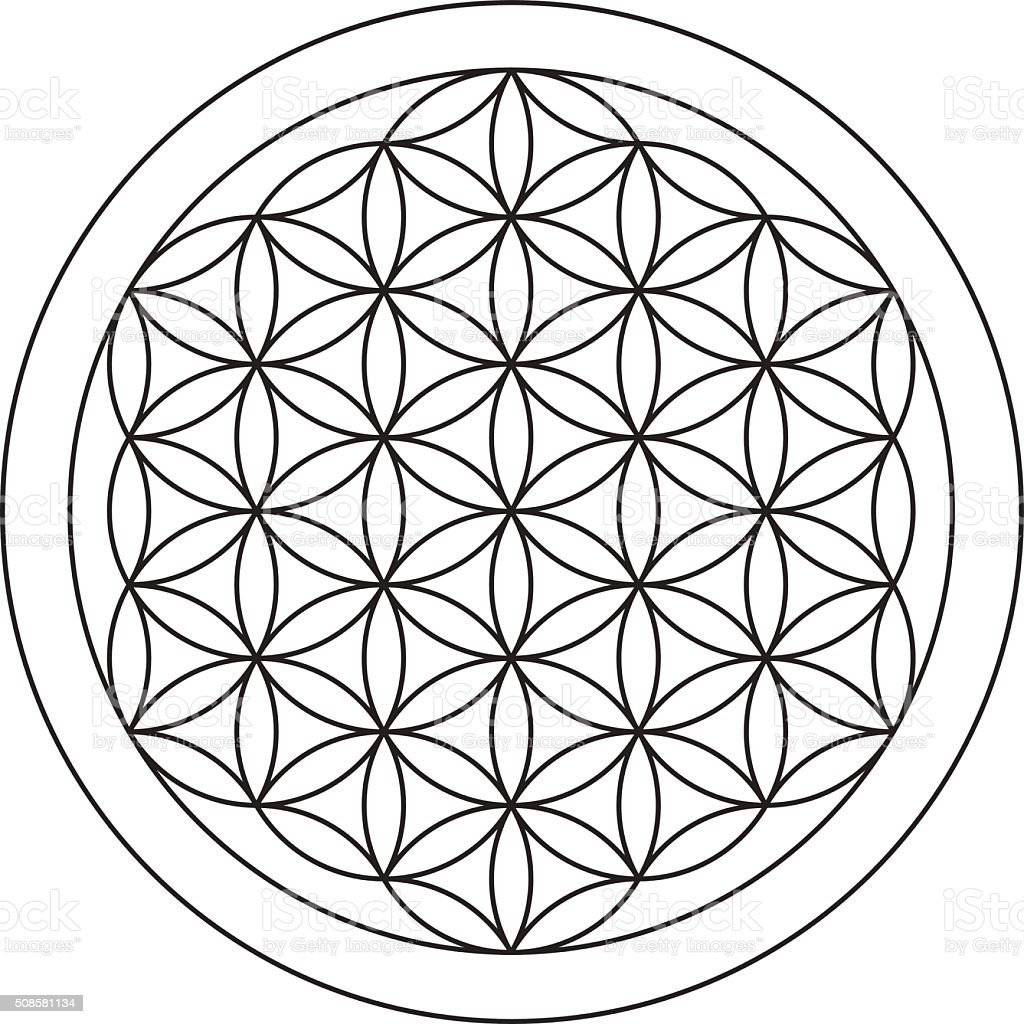 Flower of life. Sacred geometry. vector art illustration