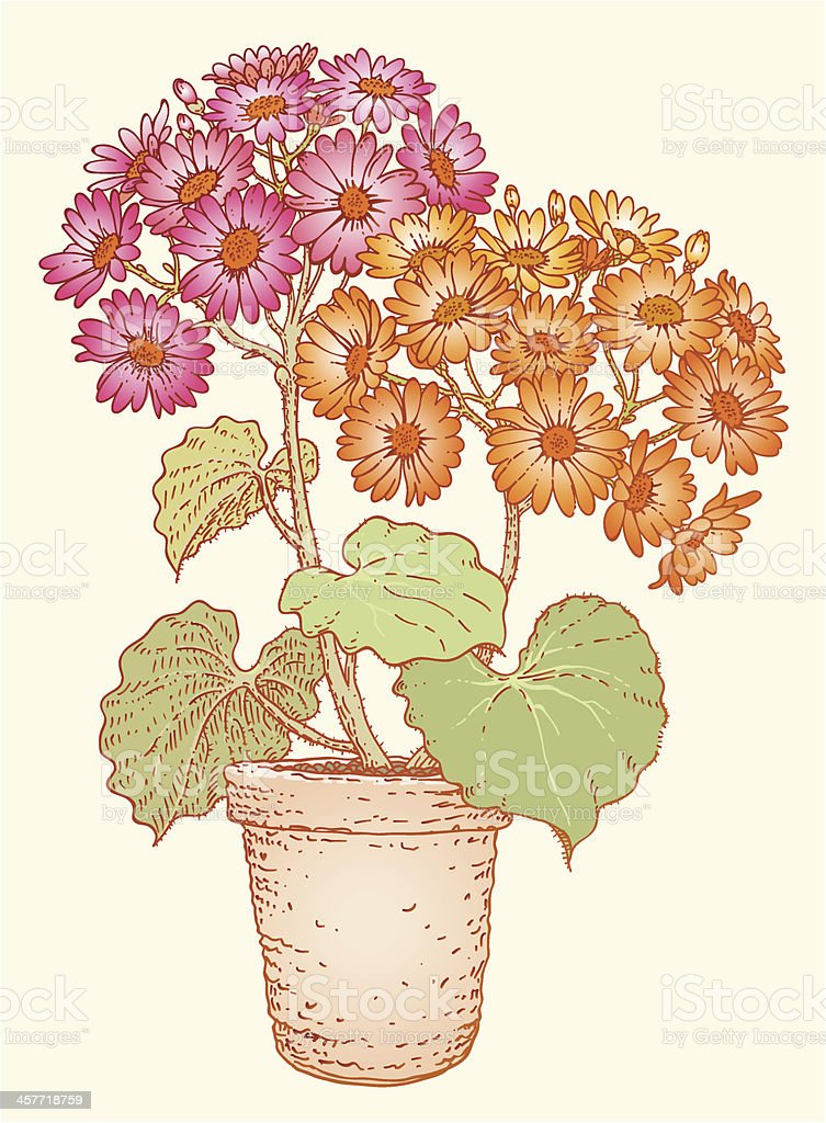 Flower pot vector art illustration
