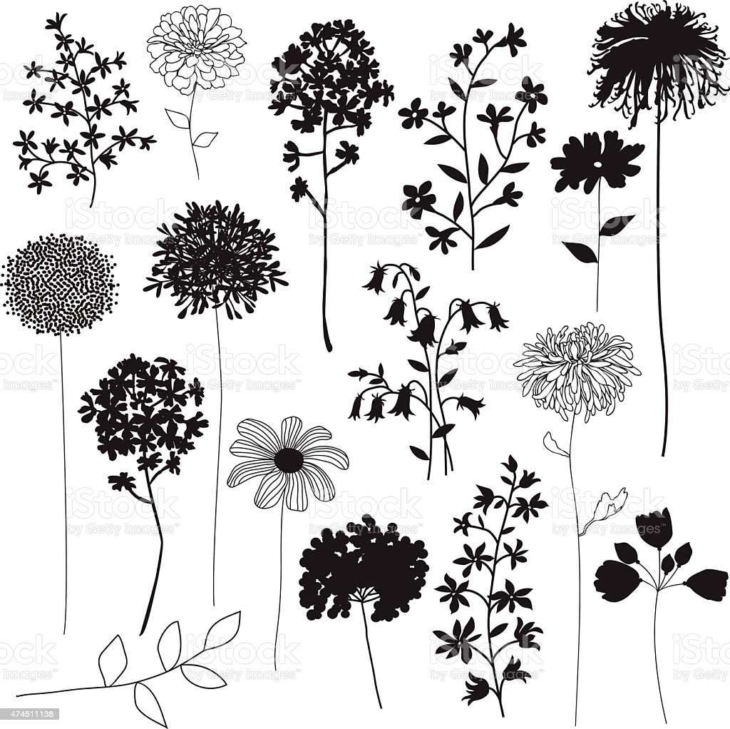 flower silhouettes vector art illustration