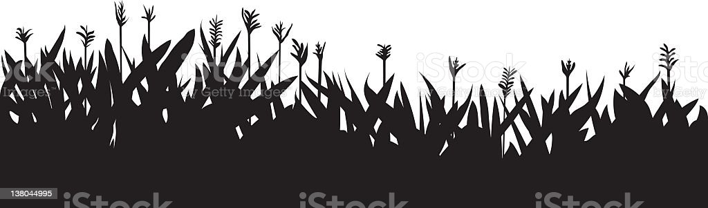 Flowerbed royalty-free stock vector art