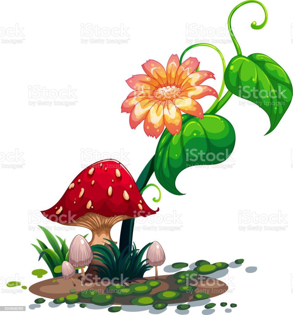 Flowering plant and mushrooms royalty-free stock vector art