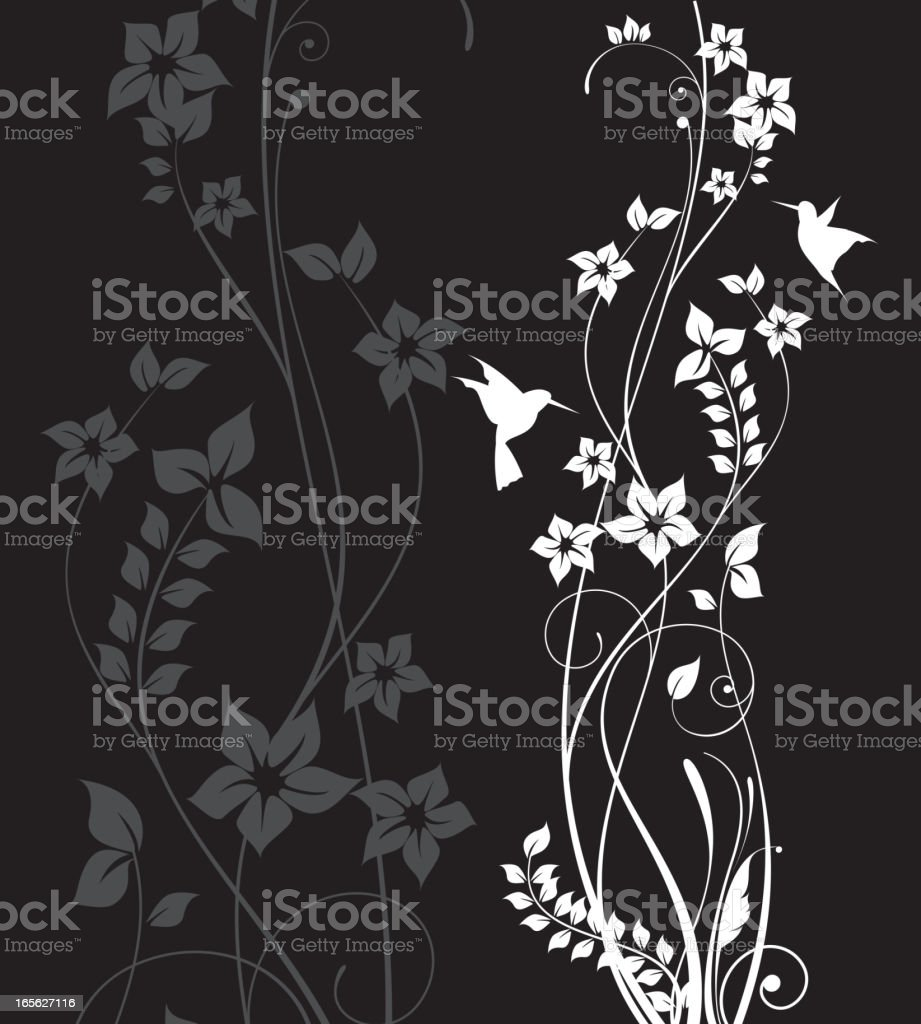 flowers and birds vector art illustration