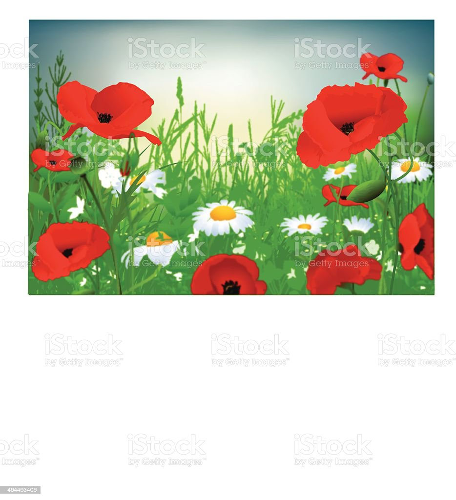 Flowers And Grass vector art illustration