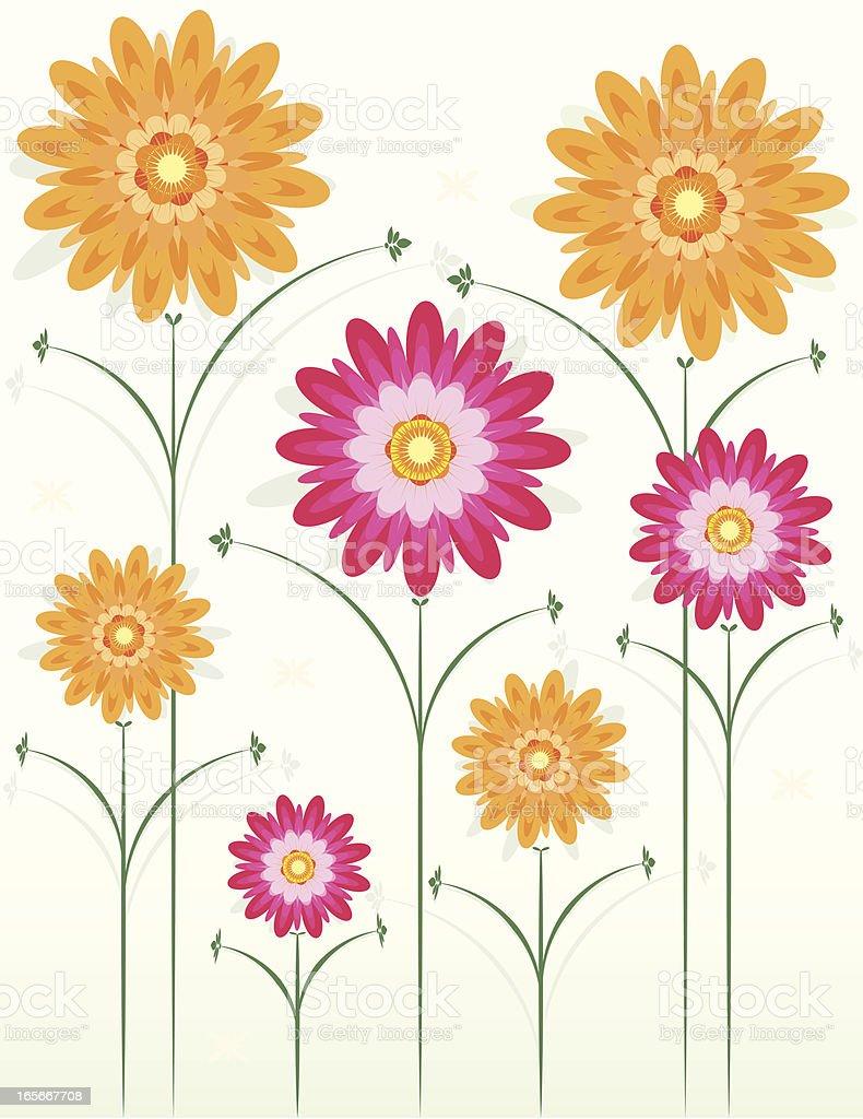 Blumen: Chrysanthemums Design, nachvollziehbare Grenze Optional Lizenzfreies vektor illustration