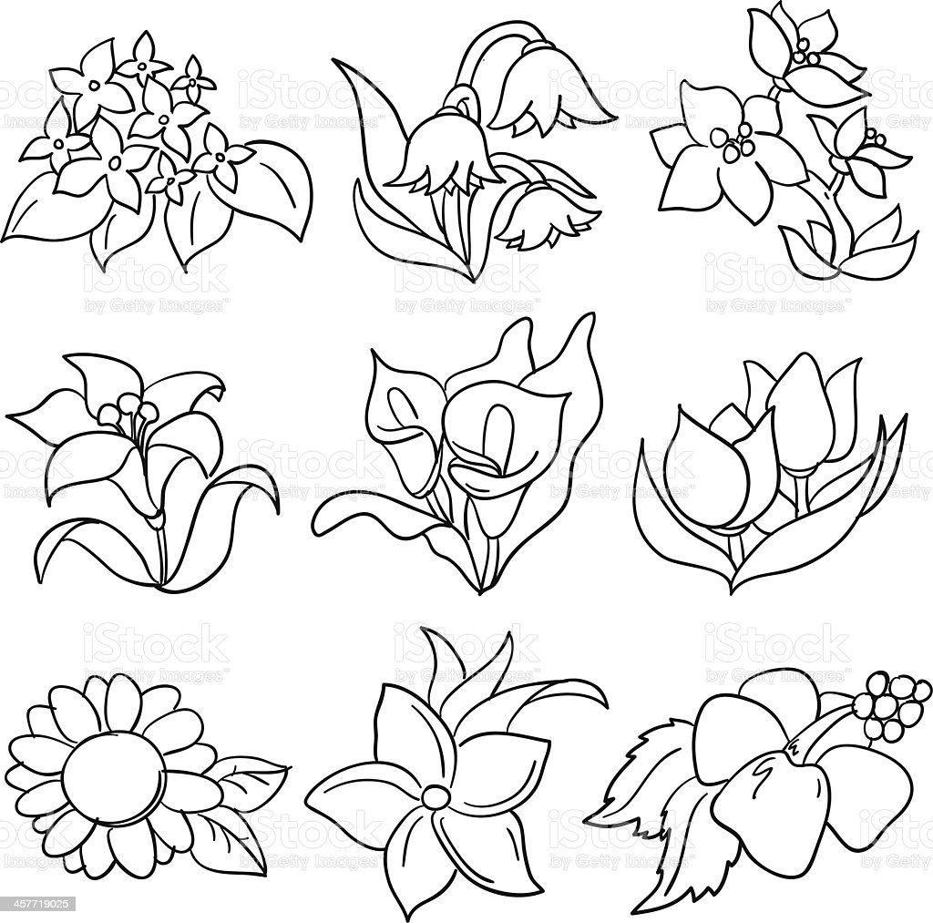 Flowers collection in black and white vector art illustration