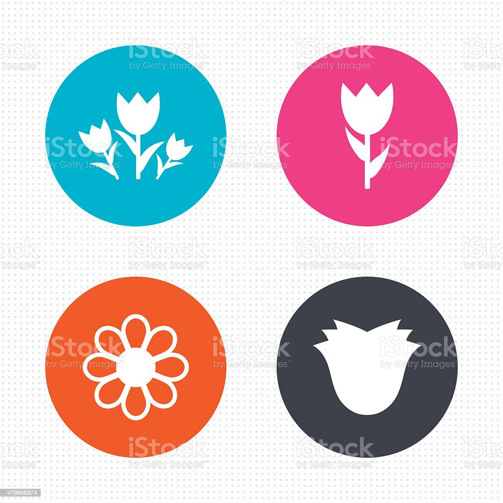 Flowers icons. Bouquet of roses symbol vector art illustration