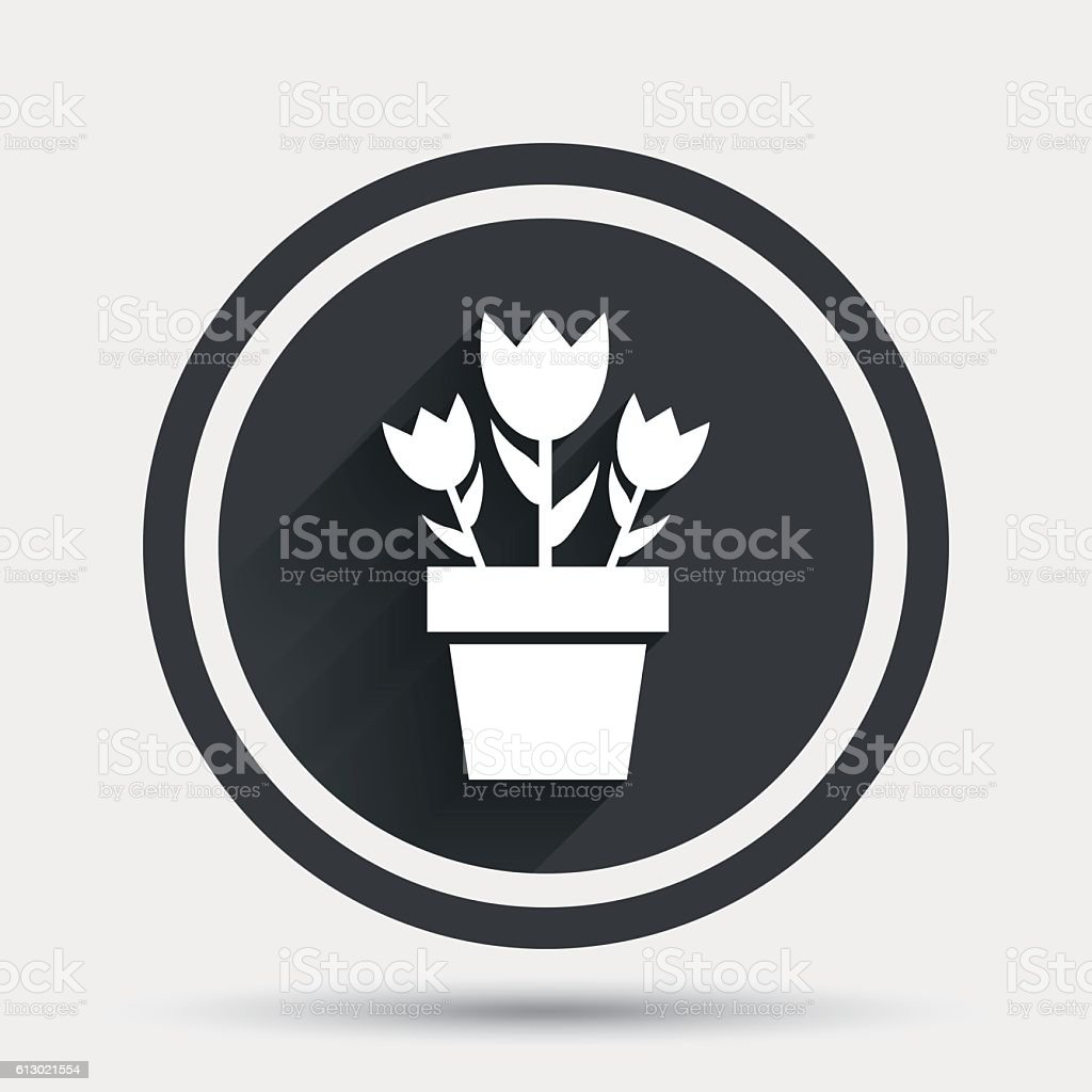 Flowers in pot sign icon. Bouquet of roses. vector art illustration