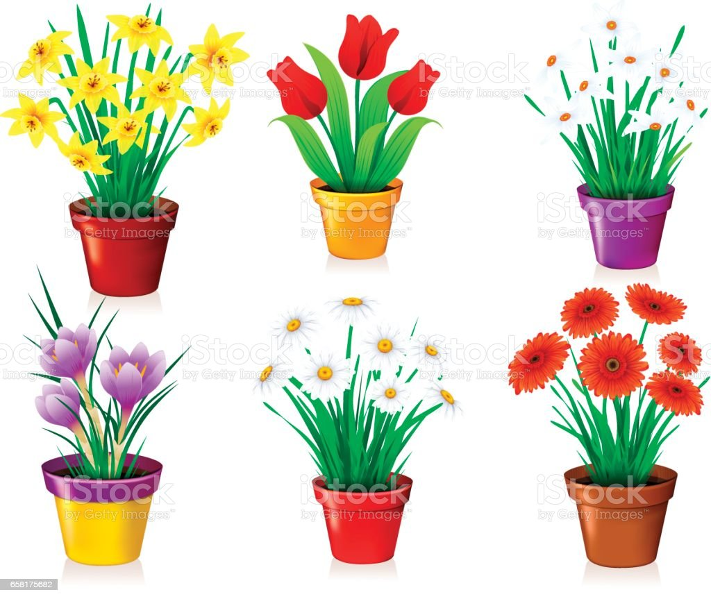 Flowers in Pot vector art illustration