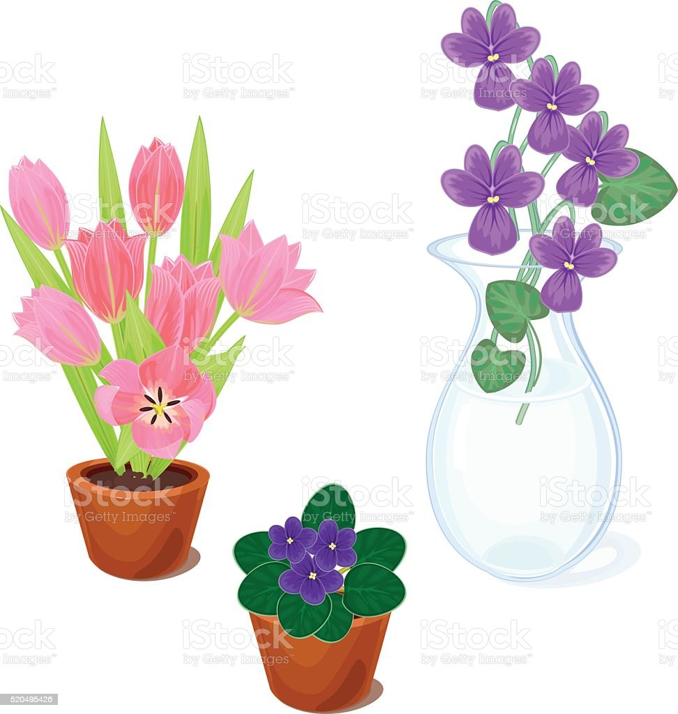 Flowers in pots set vector art illustration