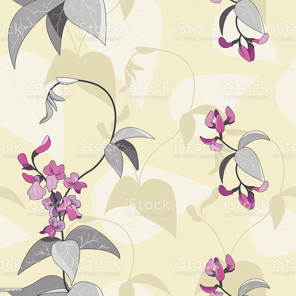 flowers of haricot royalty-free stock vector art