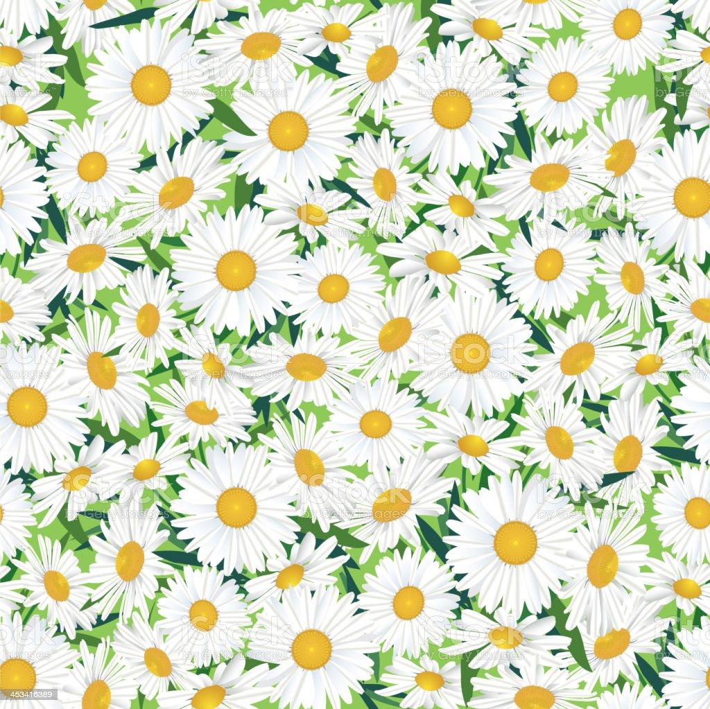 Flowers seamless wallpaper. vector art illustration