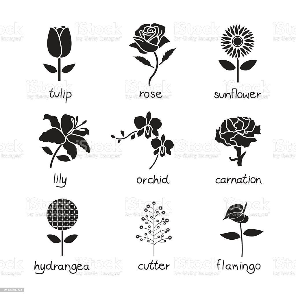 flowers vector , icon set vector art illustration