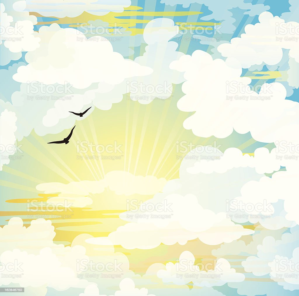Flying birds and sunset cloudy sky vector art illustration